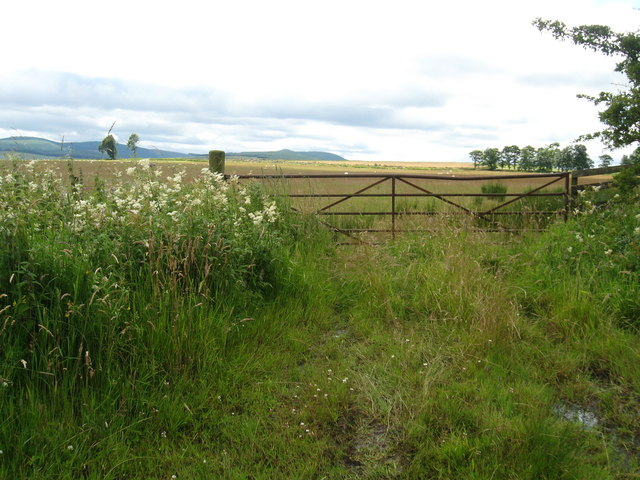 Gateway to the grazing lands beyond