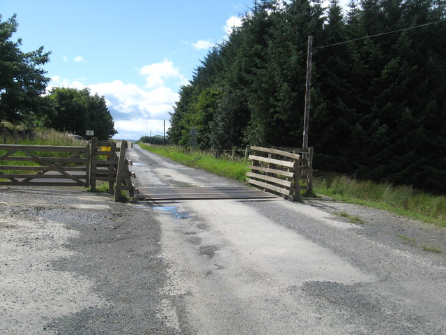 Cattle grid on the road near Earlside in Roxburghshire