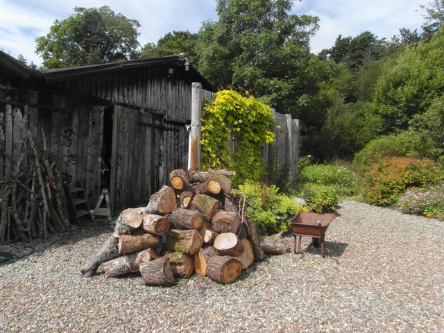 Logs for the Winter at Rhudle Mill