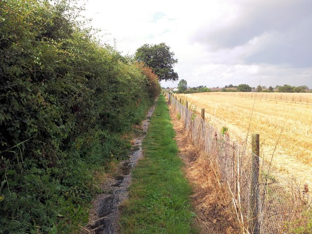 Footpath alongside a partially-harvested wheat field