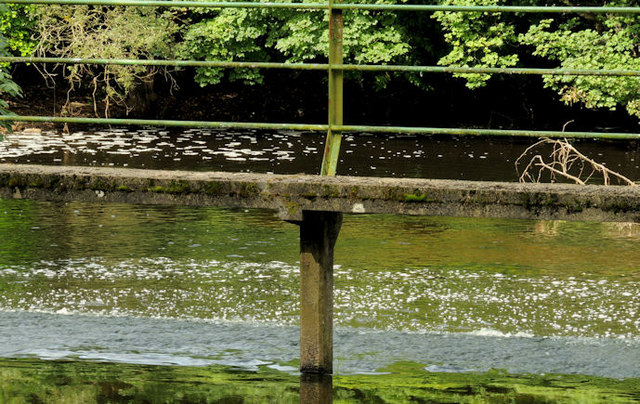 Canal overspill. Lambeg (2)