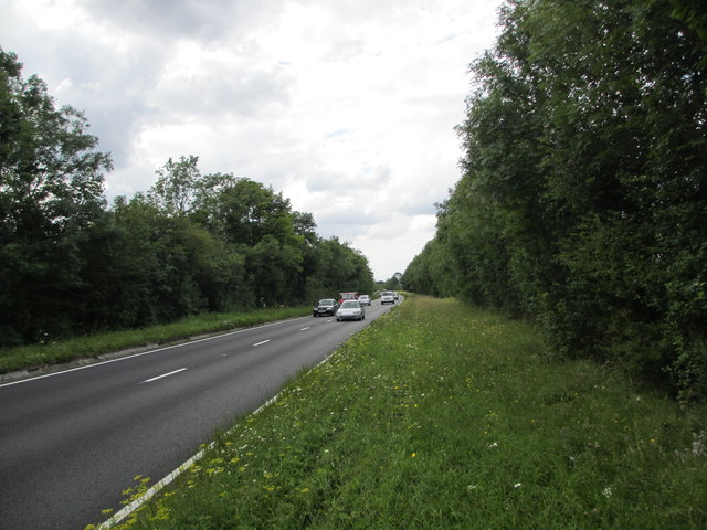 Traffic on A31, Hog's Back