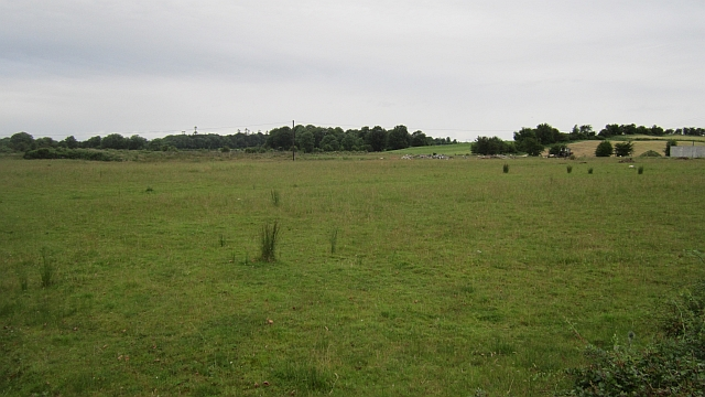 A larger field
