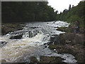 NH3101 : Rapids on the River Garry near Invergarry by Karl and Ali