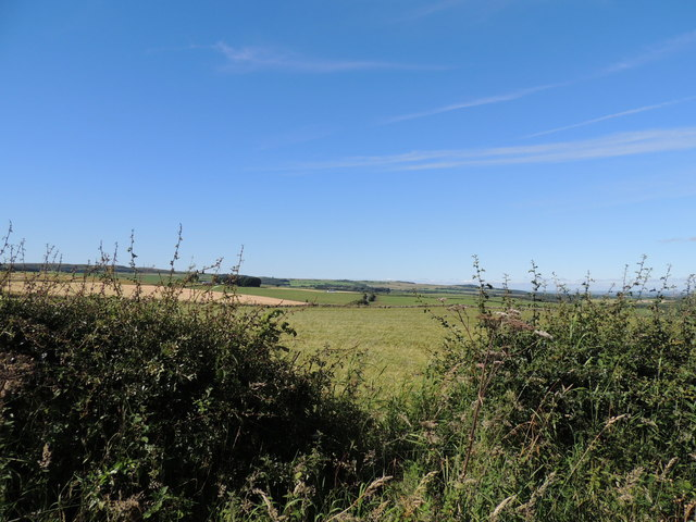 Farmland near Cassillis View