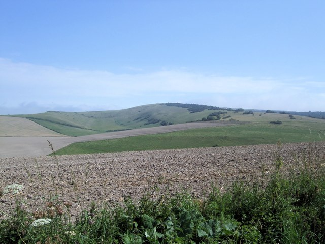 Fields at Greatease