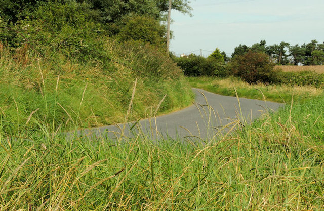 The Ringneill Road, Reagh Island near Comber (2)