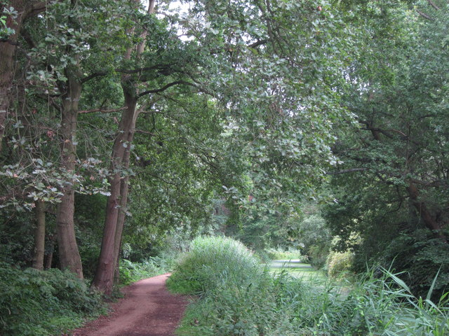Footpath along Basingstoke Canal