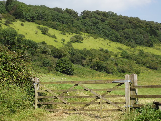North Downs by Boxhurst