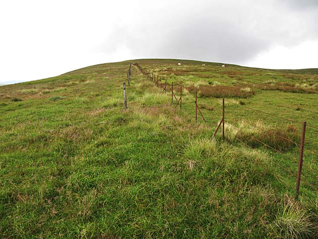 Boundary fence on Loch Fell