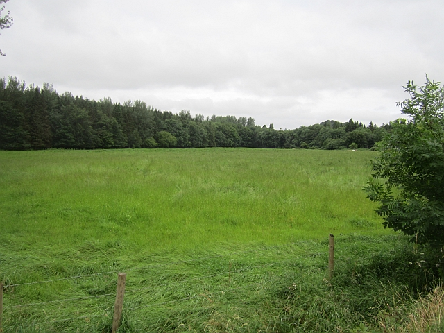 Field outside Dun na Rí Forest Park