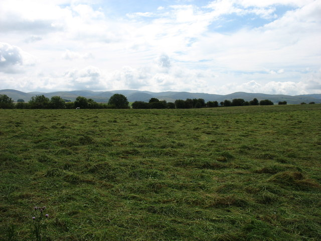 Fields near Raisbeck