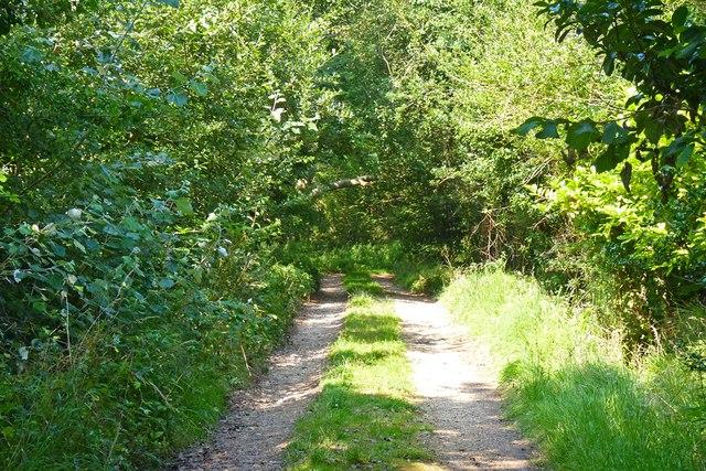 Agars Lane, Hordle