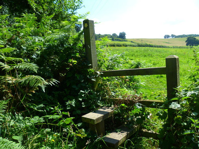 Stile near Thorncombe Street