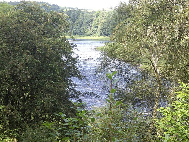 A glimpse of the Dee from Carlogie Wood