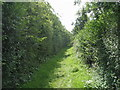 SE3931 : Leeds Country Way west of Brecks Farm by John Slater