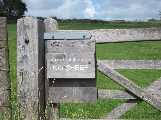 In this field there are� No Sheep