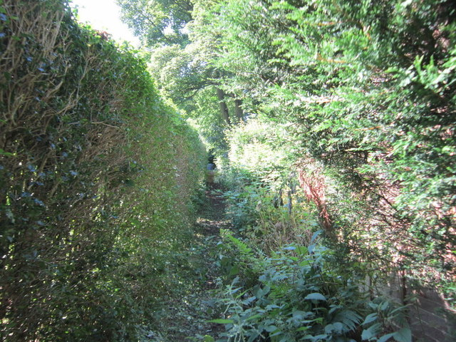 A path leading to West Park Road