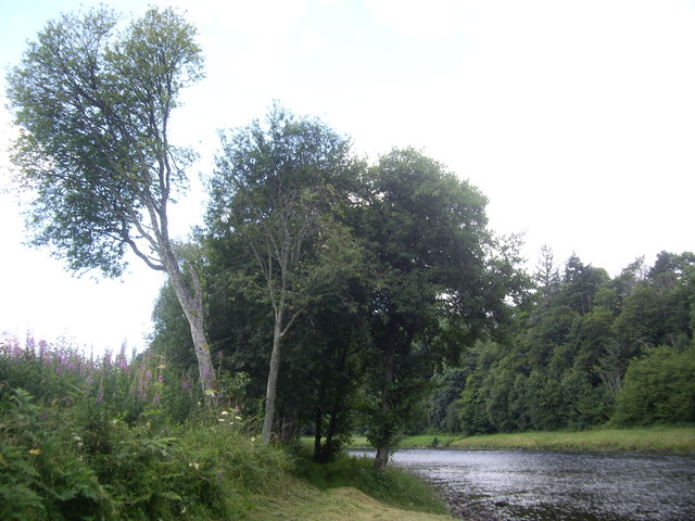 Upstream River Dee from Carlogie bothy