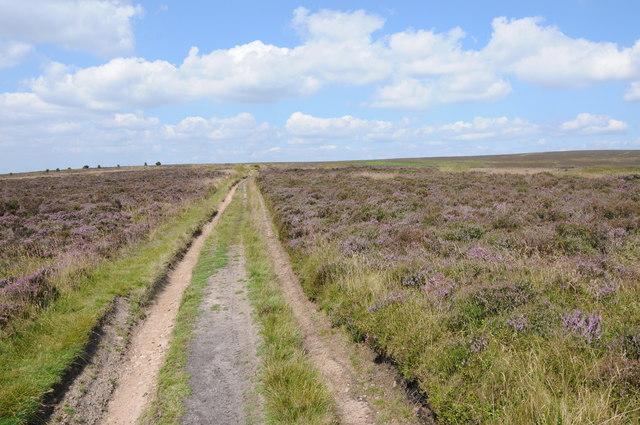 Moorland track to Twyn Du