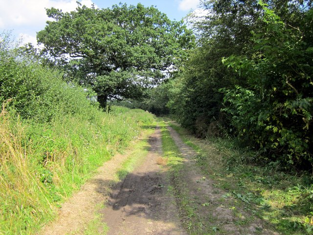 The Bishop Bennet Way near Newton