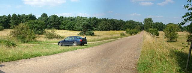 Road to Little Heath military site, Barnham