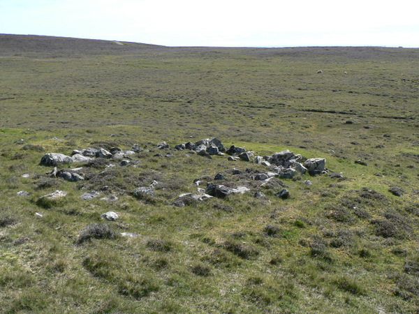 Stone Island Gray Weft Ss Nylon Metal