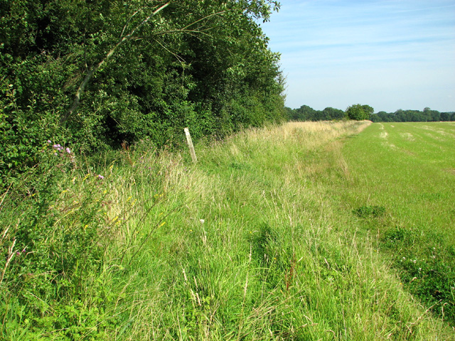 Footpath to Saxlingham Green