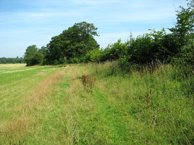 Path to Saxlingham Green