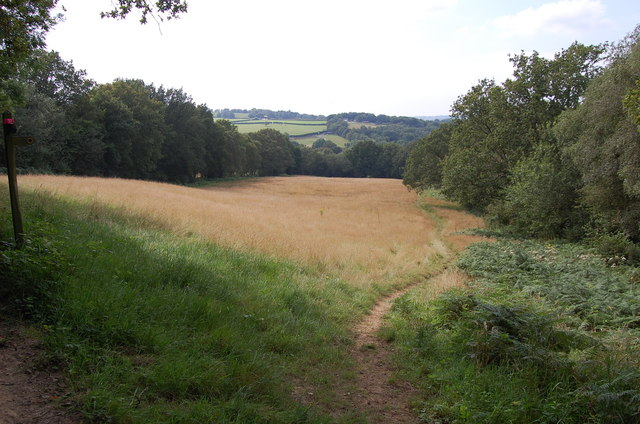 Bridleway to Potten's Mill Farm