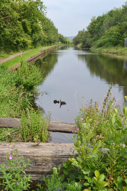 The Sheffield and Tinsley Canal near Carbrook