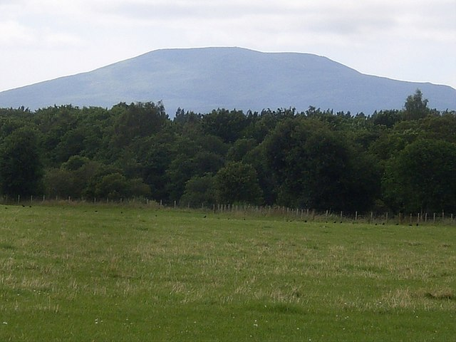 Looking west over Haugh Plantation, and on up Deeside