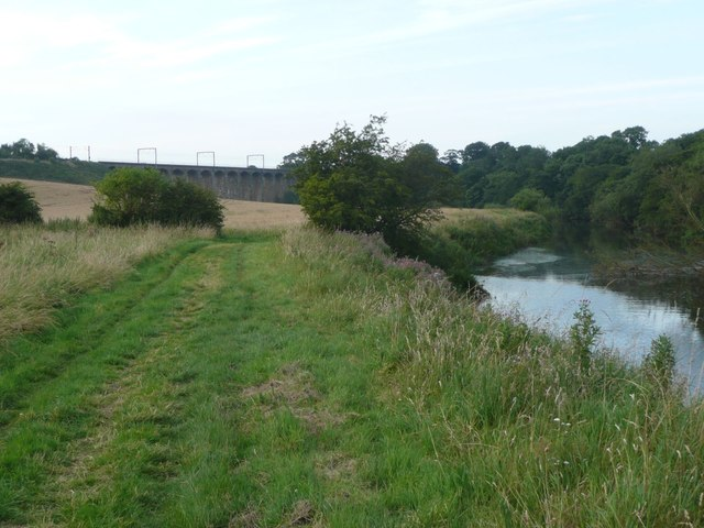 The River Aln west of Lesbury