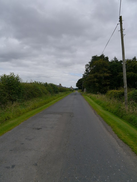 Minor Road At Springwells