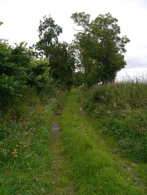 Track At Bankhead Wood