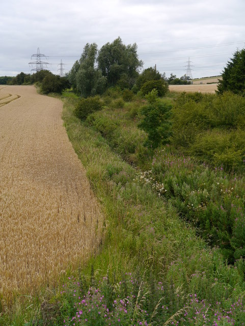 Field Boundary Near Todrig