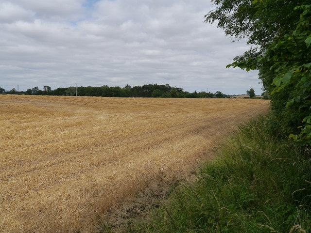 Harvested Field Near Eccles