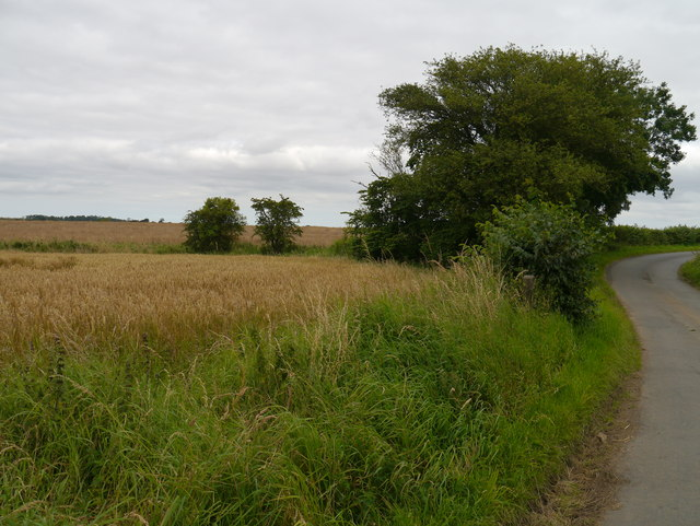 Field Corner Near Lambden