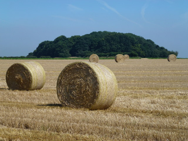 Baled straw near Docking