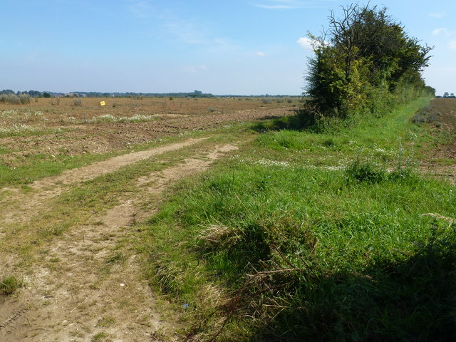 Farm track south of Burnham Road