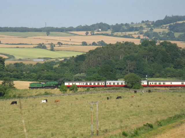 Train in an August landscape