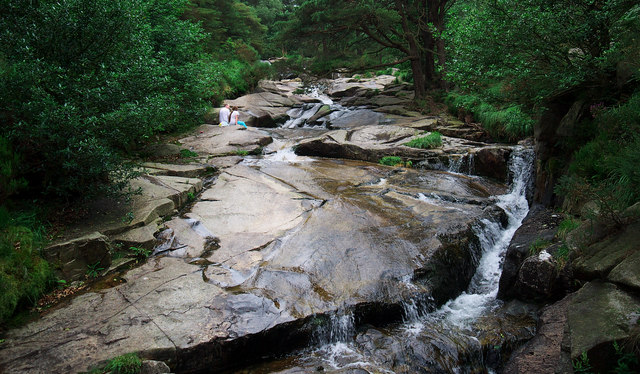 The Glen River, Donard Forest