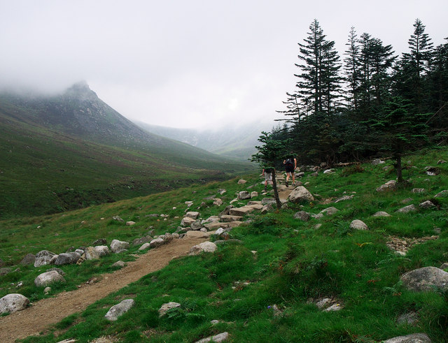 The edge of Donard Forest, Mourne Mountains