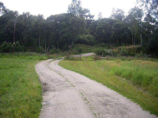 Track from Carlogie fishing bothy
