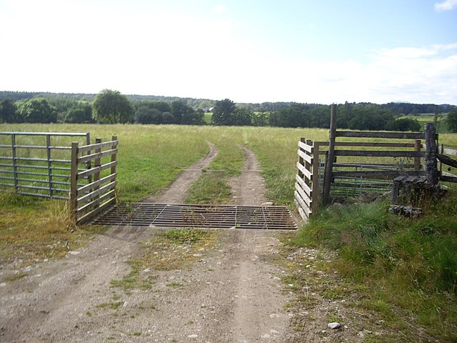 Gate, cattle grid and stile