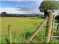 H3873 : Culbuck Townland : Week 33