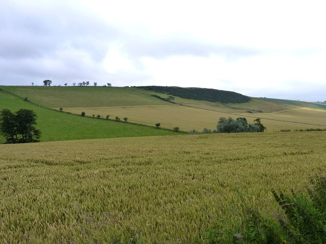 Kinninmonth Hill