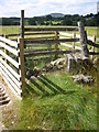 NO5799 : A stile by-pass for the cattle grid by Stanley Howe