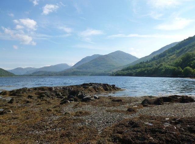 Loch Creran foreshore