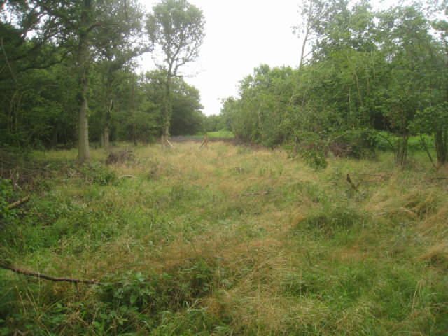 Small's Copse